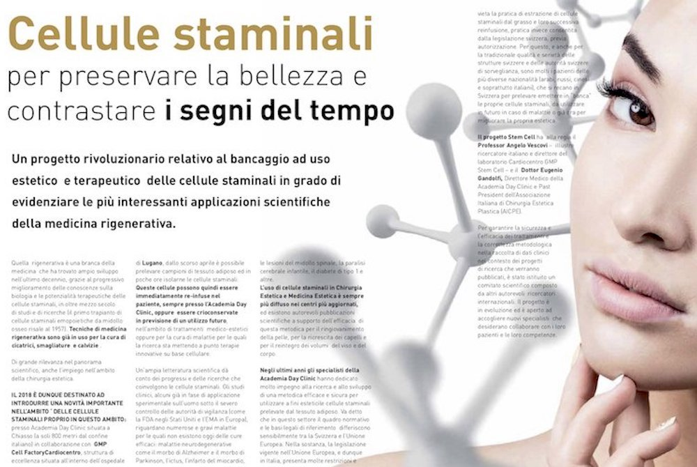 cellule staminali - revised